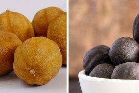 Black Lemon, Dried Lemon