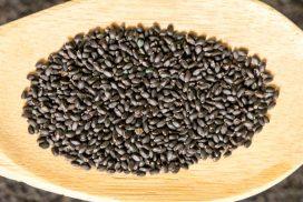 Portulaca Oleracea, Portulaca Oleracea seeds, Portulaca Oleracea