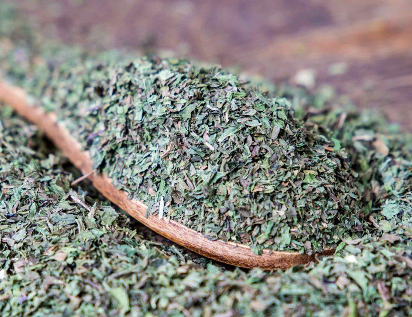 Spearmint plant